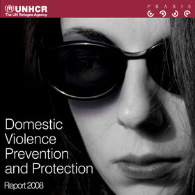Domestic Violence Prevention and Protection